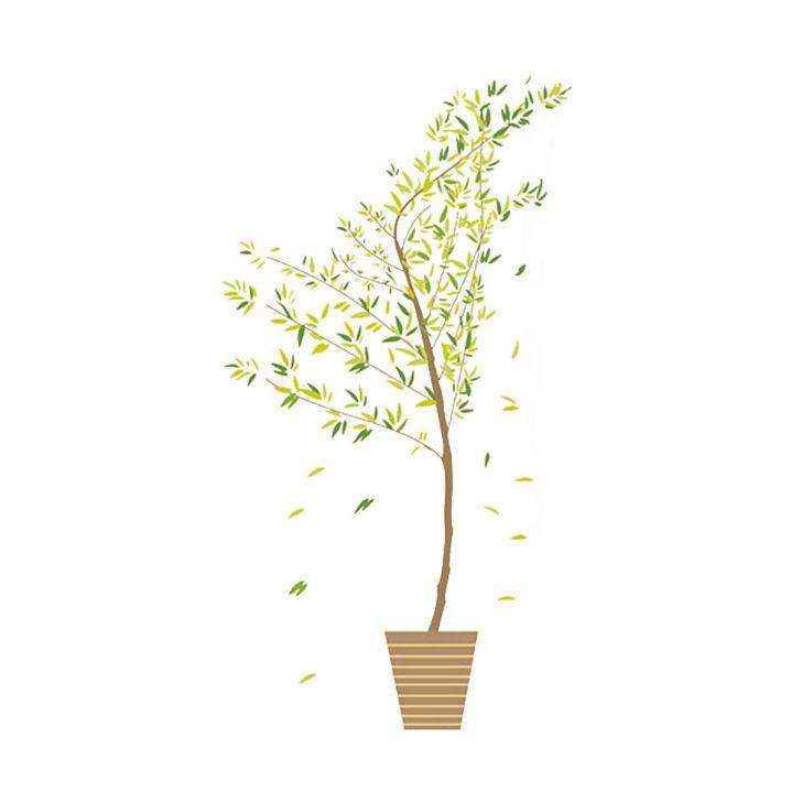 Adesivo de Parede Árvore Bambú Mosso - Grudado Adesivos Cod: GR655AC07IPOMOB