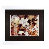 Quadro Harmonia das Flores 1 Branco 82 x 97 cm