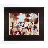 Quadro Harmonia das Flores 2 Branco 82 x 97 cm