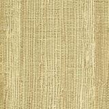 Papel de Parede Texturas Palha Esverdeada  9075