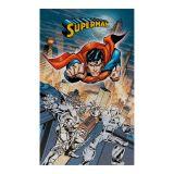 Toalha Veludo Superman Villains Buettner