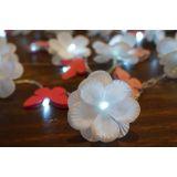 Luz De Fada Flores e Borboletas 110v
