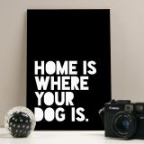 Placa Decorativa 20X29  With your dog