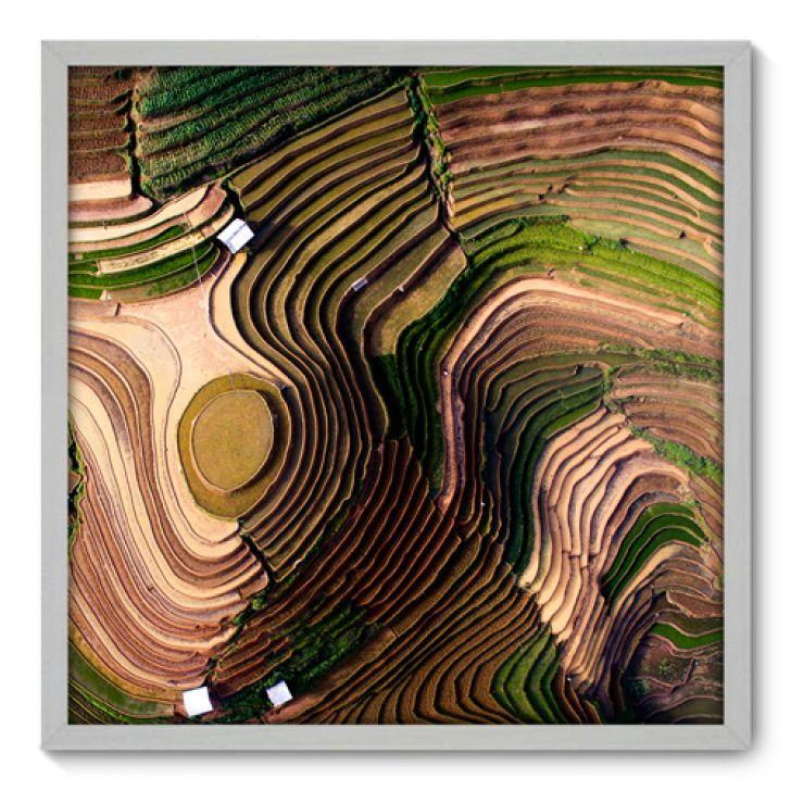 Quadro Decorativo - Plantação - 70cm x 70cm - 135qnpdb